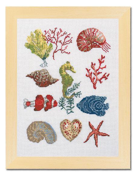 motifs gratuits de broderie sur ABCfeminin.com : coquillages, poissons et plantes