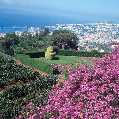 Jardin Botanique à Funchal, capitale de Madère © Marcial Fernandes.