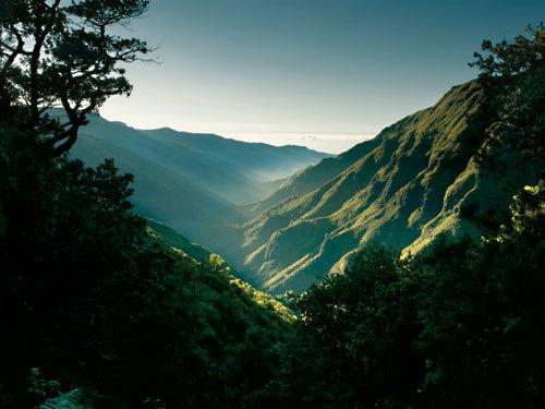 Le chemin des 25 sources - Point de départ de cette randonnée : le plateau Paul da Serra