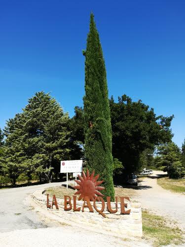 Domaine La Blaque, fournisseur de raisin blanc pour Panier des Sens © ABCfeminin.com.