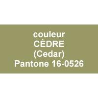 couleur Cedar - Pantone®