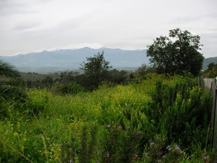 La Crète, sa beauté sauvage et ses vestiges historiques, sous un soleil printanier