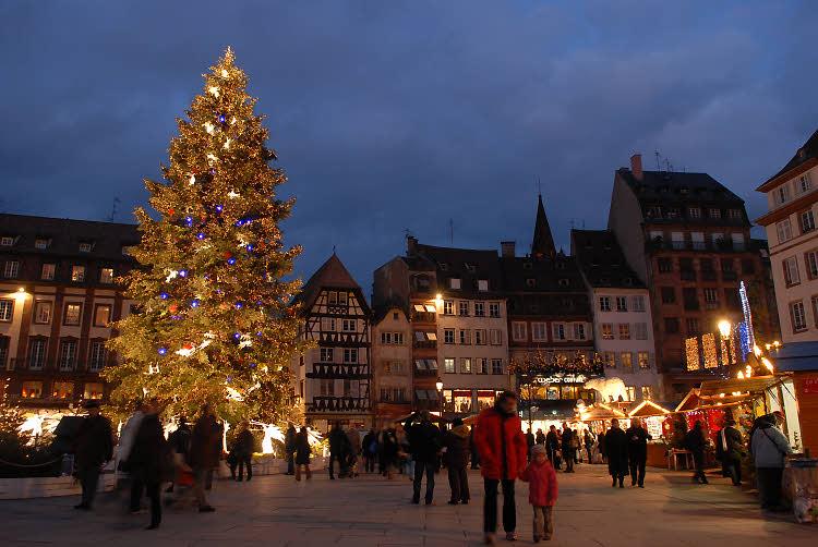 Le sapin géant de la place Kléber à Strasbourg (2011)
