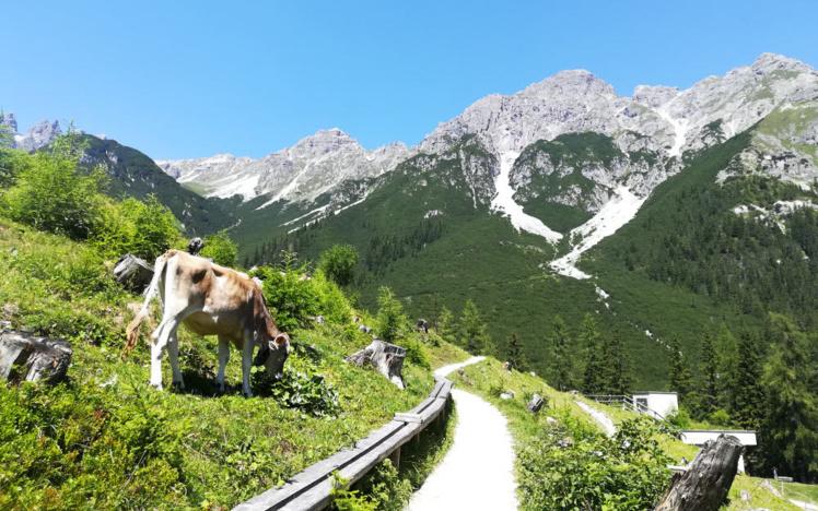 Le Scheibenweg sur les hauteurs de la vallée de Stubai au Tyrol © ABCfeminin.com