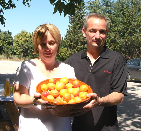 le goût ensoleillé des abricots - idées, conseils et recettes