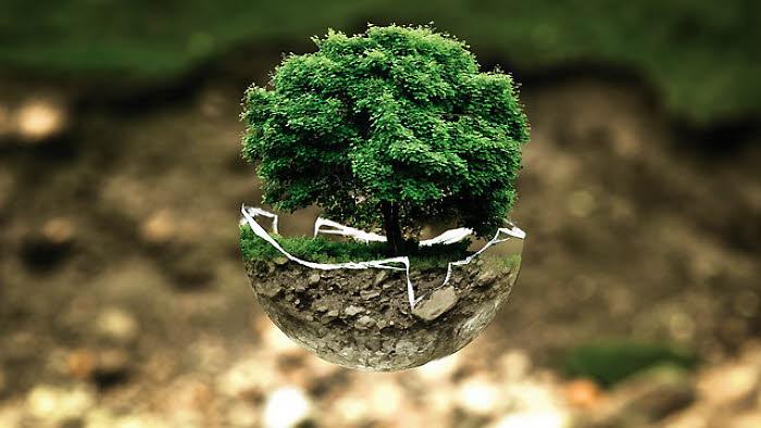 Pourquoi devenir éco-responsable ?