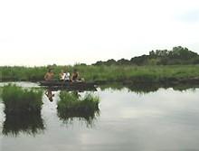 le Parc Naturel régionale de Brière