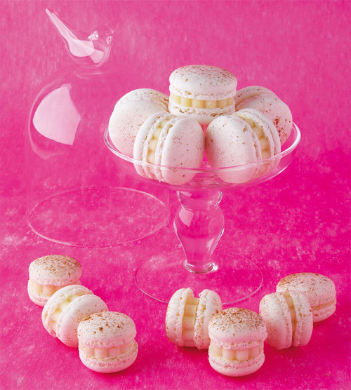 Zoom recette petits macarons aux épices et parfum d'Appenzeller®