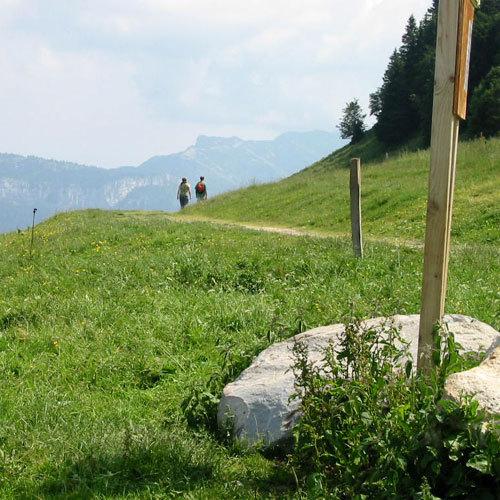 Le plateau du Vercors en été © DR