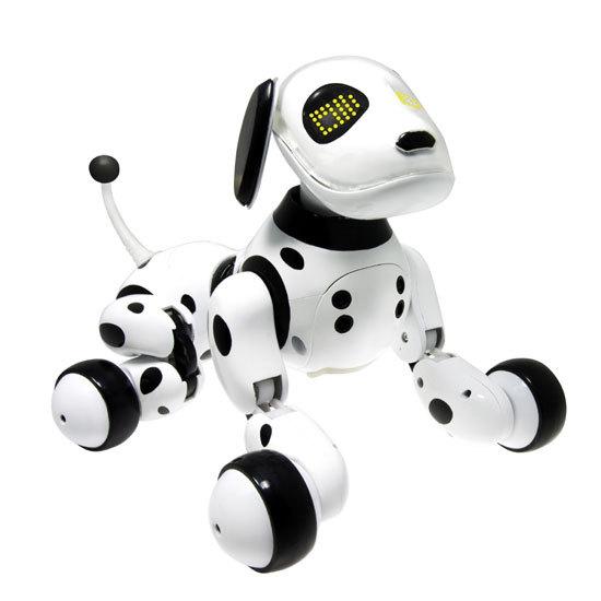 Chien robot ZOOMER