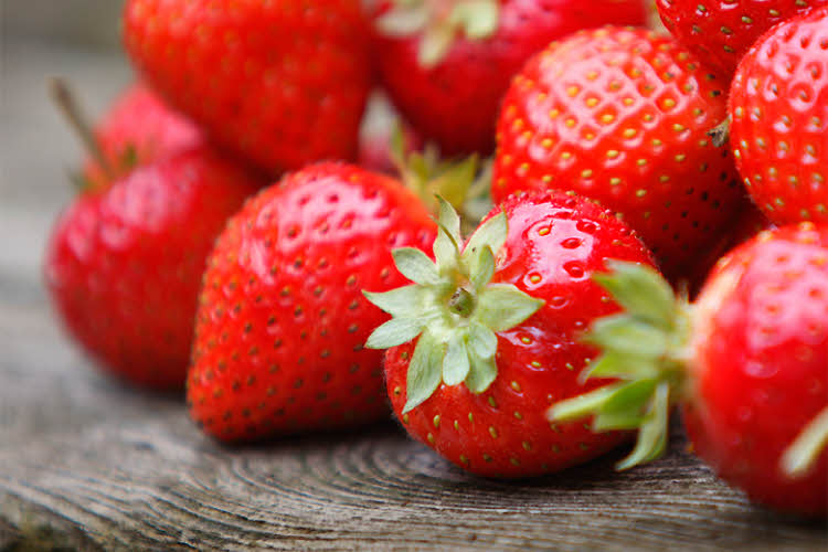 les fraises : achat, conservation, recettes et conseils nutritionnels.