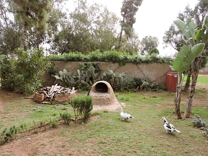 La ferme du Mazagan D.R.).