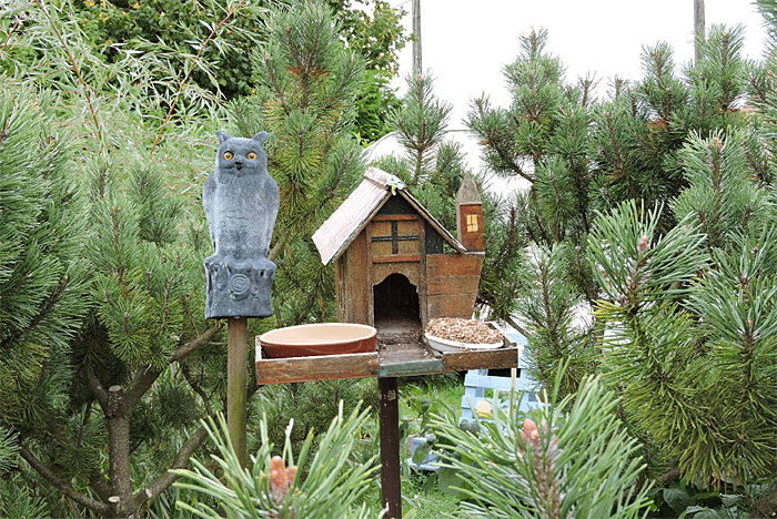 La maison des oiseaux dans le jardin de Flavie (D.R.)