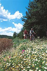 Promenade à vélo en Haute-Marne