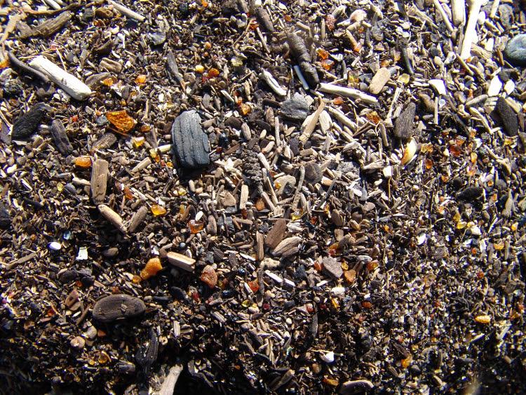 Pierres d'ambre rejetées par la mer Baltique à Gdansk © D.R.