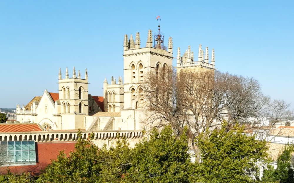 Montpellier : la cathédrale Urbain V et la faculté de médecine © ABCfeminin.com.