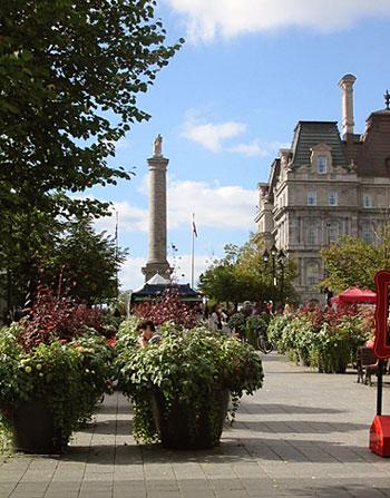 Place Jacques Cartier en haut de laquelle est érigée depuis 1809 la colonne Nelson, l'un des plus anciens monuments historiques du Québec (D.R.)