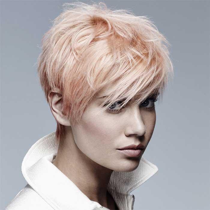 Coupe courte femme 60 ans cheveux blancs