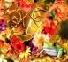idées cadeaux pour Noël autour des thèmes food, faune et flore