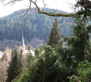 Rencontre avec des passionnés de la vallée de la Bruche en Alsace