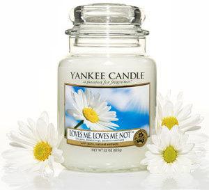effeuillez les marguerites avec les bougies Yankee Candle