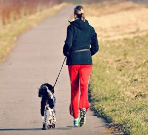 Les secrets de la vitalité - 5 conseils simples pour plus de tonus par temps froid