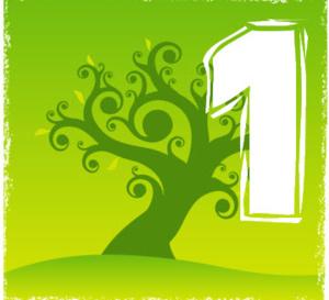 Votre chiffre numérologique est le 1, voici ce qui vous attend cette année