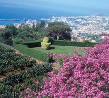 destination soleil et nature sur l'île de Madère