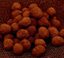 Recette : les truffes au chocolat miellé du chocolatier Patrick Roger