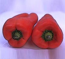 Recettes aphrodisiaques - le pouvoir érotique des aliments