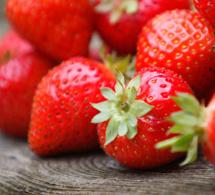 Les fraises : achat, conservation, recettes et conseils nutritionnels